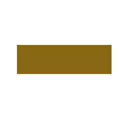 argentum_logo